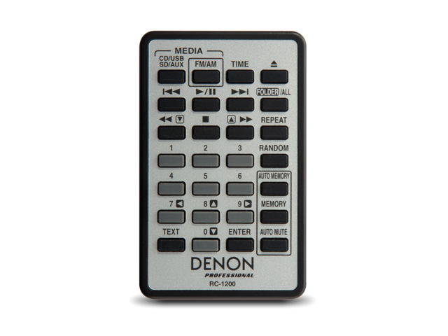 Image of the remote for the DN300ZB.